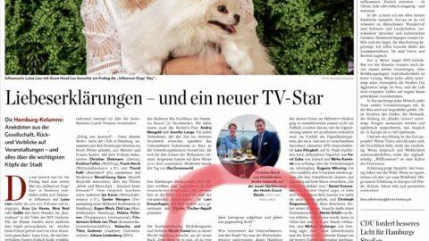 Presseartikel | Abendblatt vom 25.05.2019